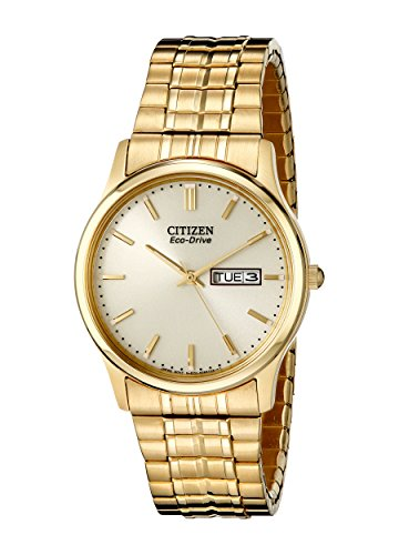 b0c03e4d423 Citizen Men s Eco-Drive Expansion Band Watch with Day Date